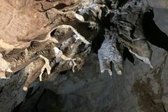 Concrétion - Grotte de St Cirq Lapopie
